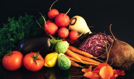 neandrtalci-si-k-jidlu-varili-zeleninu